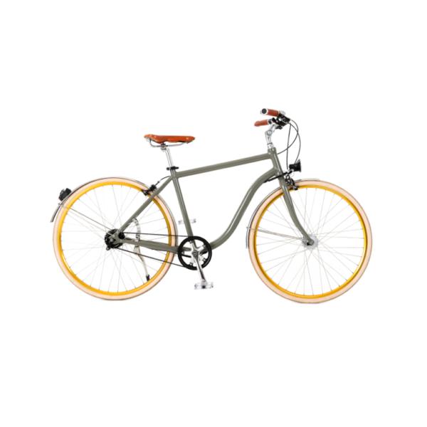 vélo courroie pneus pleins vue principale
