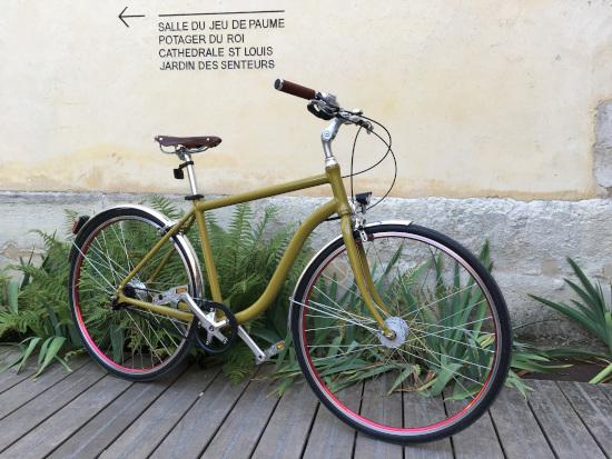 cycle élégant coloré haut de gamme courroie